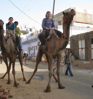 Taking a camel safari in Pushkar, India
