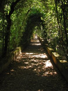 Visiting the Boboli Gardens in Florence