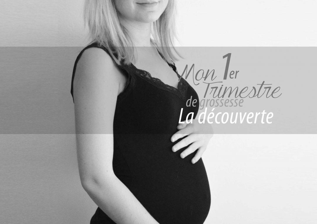 """Résultat de recherche d'images pour """"1er trimestre de grossesse"""""""