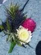 Greville's buttonhole