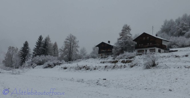 View behind chalet