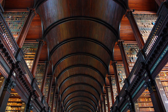 5 reasons why libraries are beyond awesome