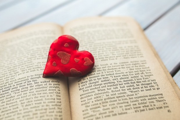 The little Valentine's Day Literature Quiz