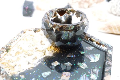 abalone shell collection