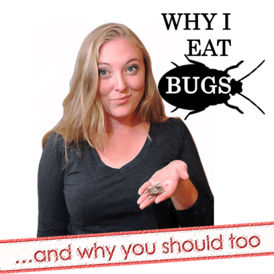 Why I Eat Bugs– and Why You Should Too