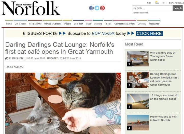 Cat cafe article on Norfolk Magazine page for portfolio