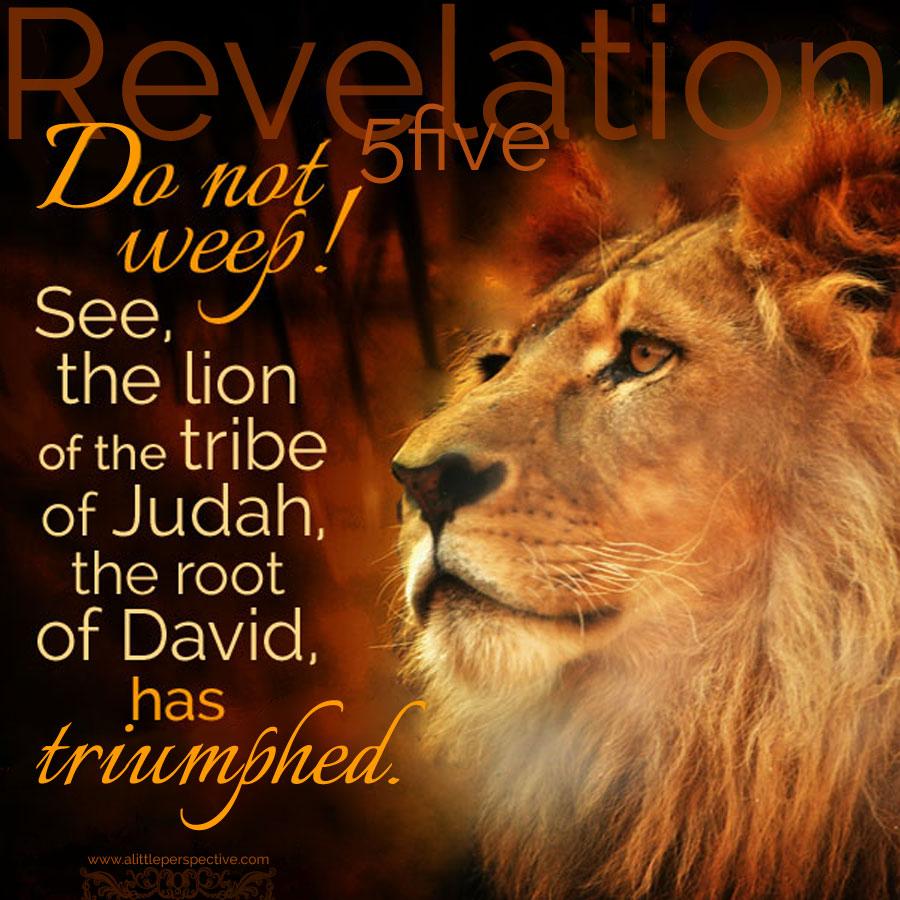 Image result for revelation 5