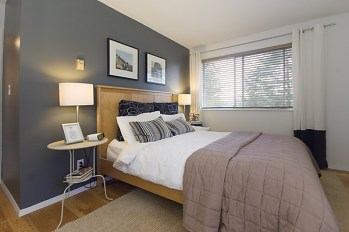 Use of focal wall in dark gray adds drama