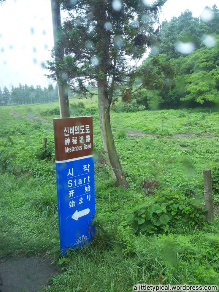 Korea | alittletypicalwordpress.com