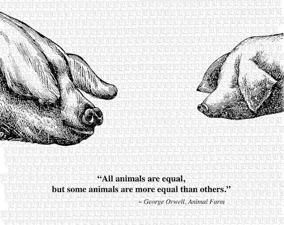 animal farm quote