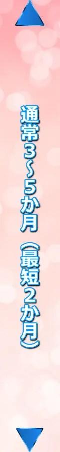 ninbai_nagare_kikan