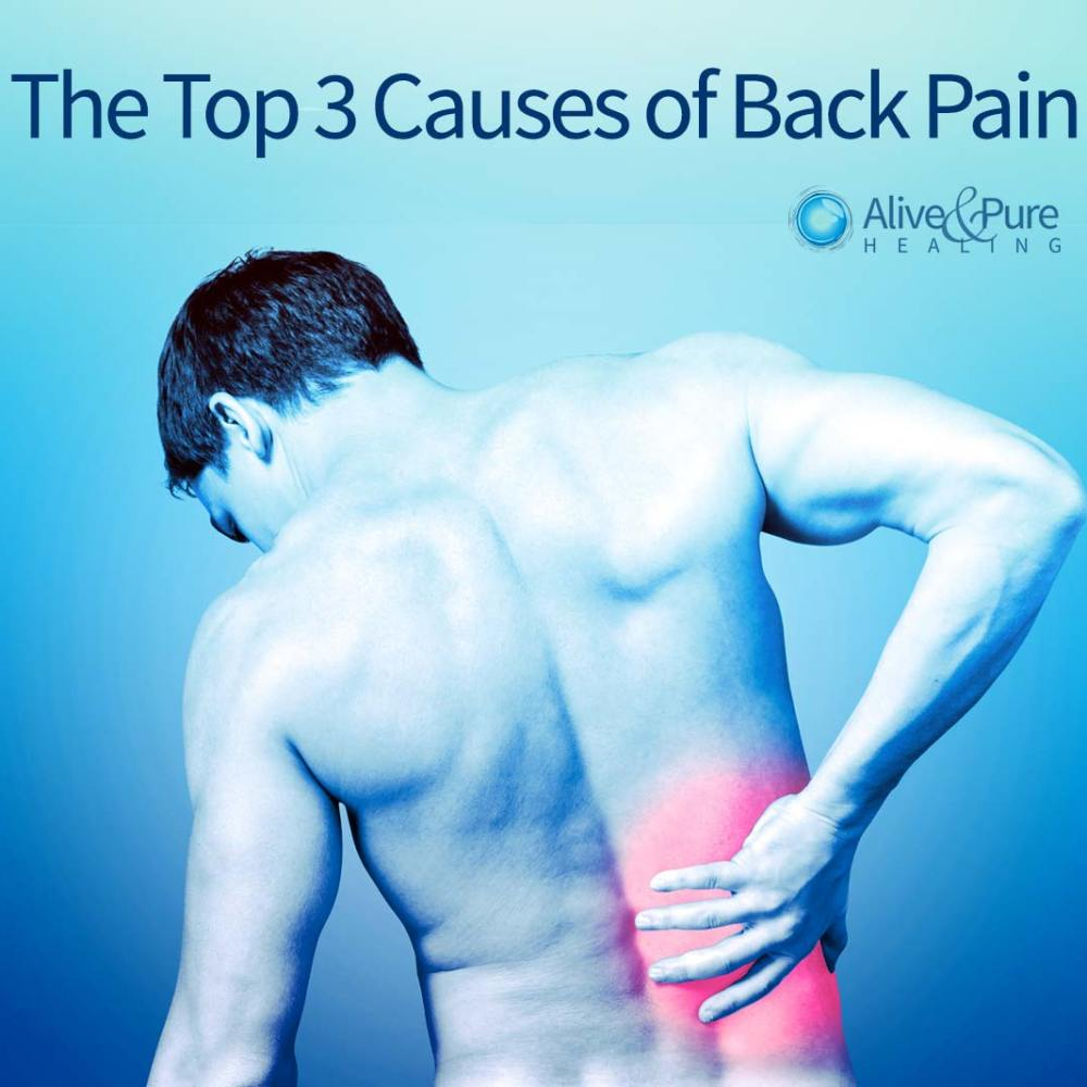 The Top 3 Causes of Back Pain | Alive and Pure Healing