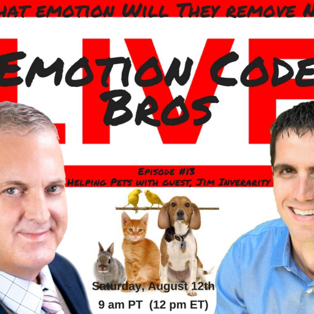Episode #13 The Emotion Code Bros Live Demo with Jim Inverarity and PETS