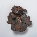 Rehmannia (Shu Di Huang) (root)