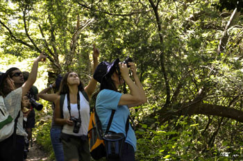 Percurso Birdwatching VilaReal2 350