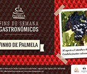Fins de Semana Gastronómicos do Vinho