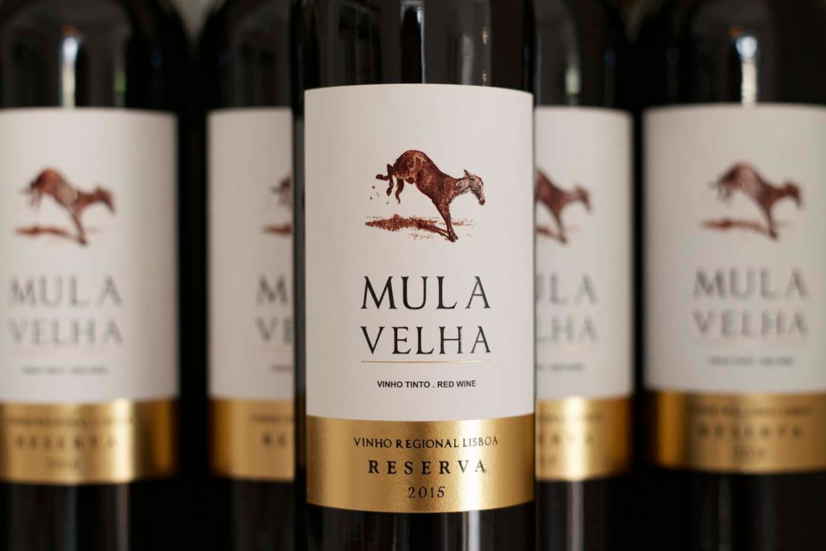 Quinta do Gradil coloca vinhos a bordo da TAP