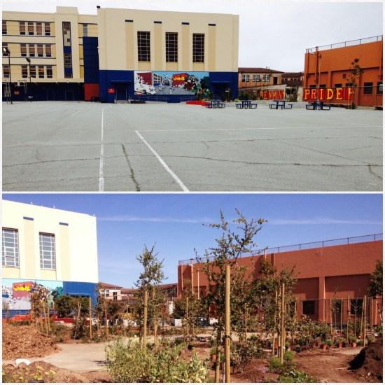 Transformation at Rear Yard of James Denman Middle School