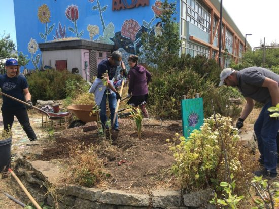 Working together to create a greener future in OMI/ Excelsior Living Library & Think Park.