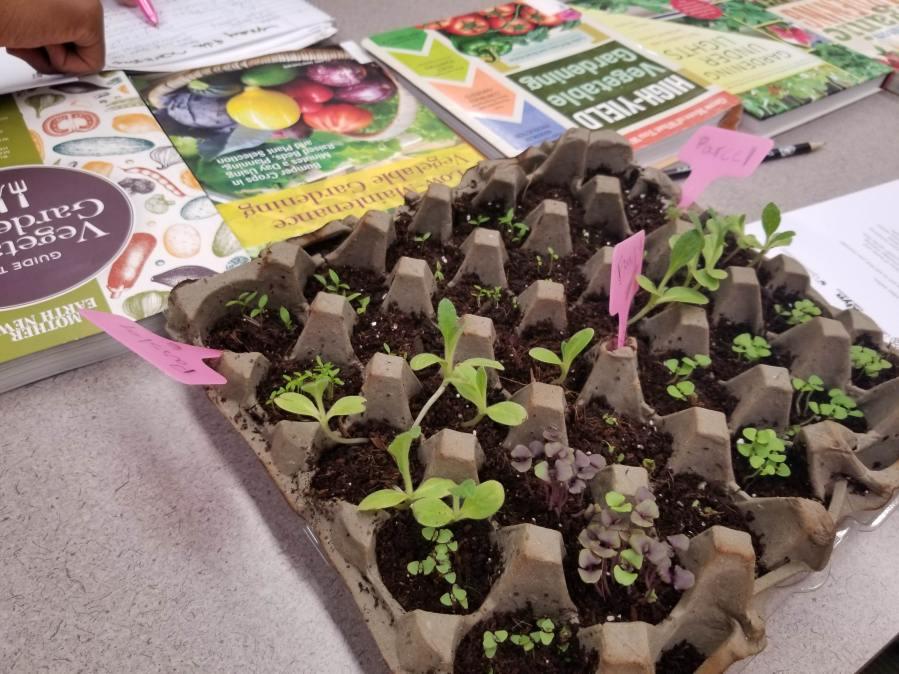 Free monthly organic gardening workshop in RI Public Library