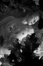 Lune_Rousse_00