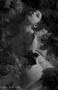 Lune_Rousse_06