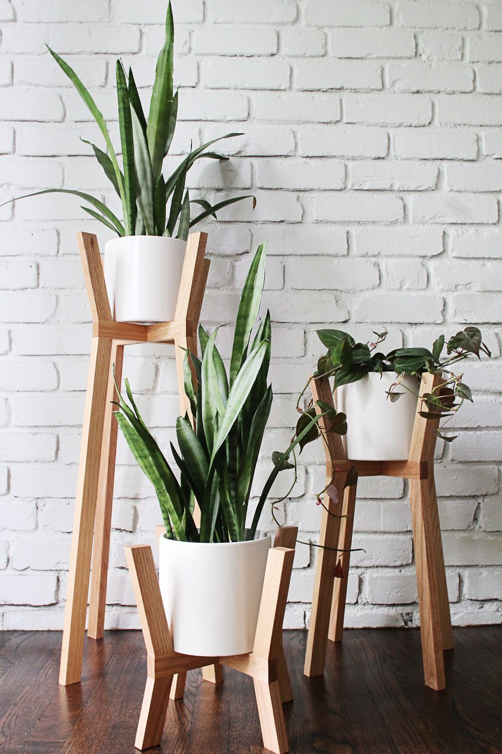 Wood stand for plants by fern - Transform your home into a tropical paradise | Aliz's Wonderland
