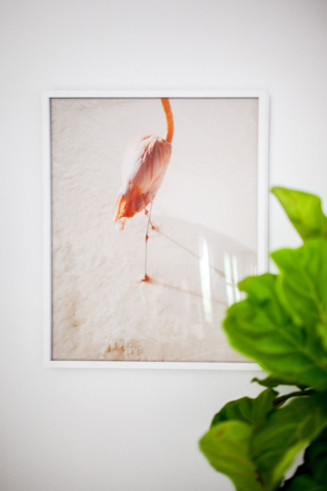 Beautiful flamingo print by Ariella Vey - Decorate your home with flamingos | Aliz's Wonderland