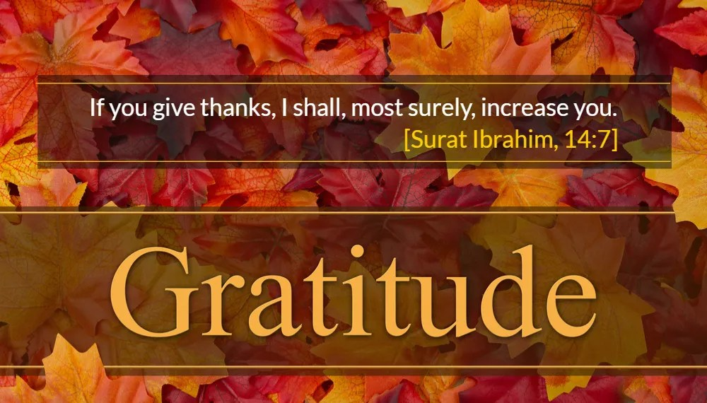 On the Deeper Meanings of Gratitude