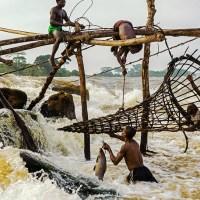 The Wagenia Fishermen