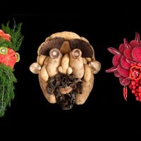 Fresh Faces: Theatricality And Organic Food Art