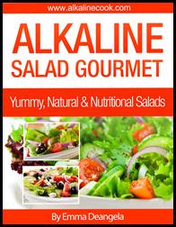 Alkaline Cook - Best Selling Recipes Book 19