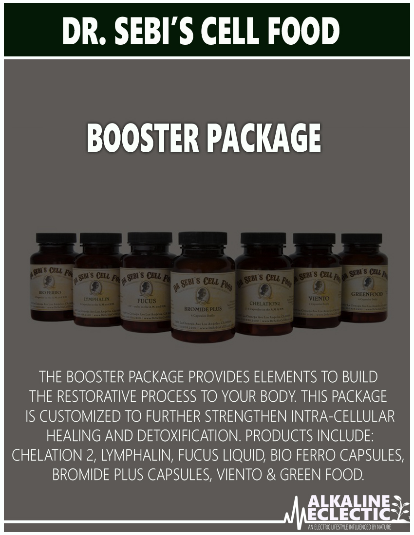 CELL FOOD BOOKLET BOOSTER 2