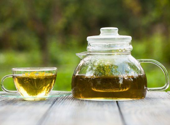 fennel tea6