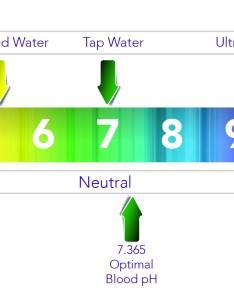Ph body diagram wiring level test levels water also online rh ghtandzaun