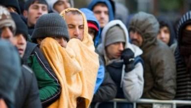 Photo of احصائية تظهر نسبة اللاجئين السوريين الراغبين بالعودة لبلدهم