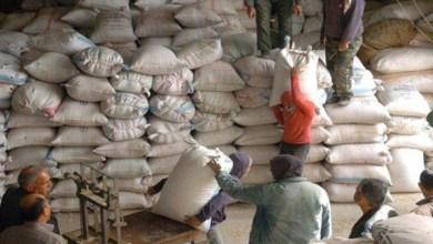 Photo of الحكومة توافق على تخفيض أسعار مادة النخالة