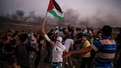 Photo of شادي عبد العال الشهيد الأصغر خلال مسيرات العودة في فلسطين