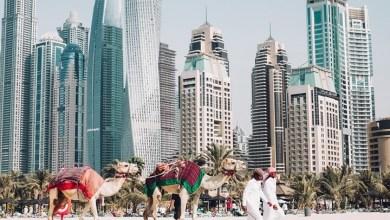 "Photo of ""سياح إسرائيليون"" ينهبون فنادق الإمارات"