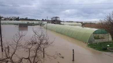 "Photo of تضرر 385 بيتاً بلاستيكياً في ريف طرطوس بسبب ""التنين"" و الفيضانات"