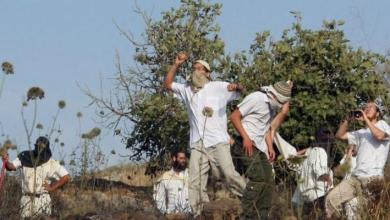 Photo of تحت حماية جنود الاحتلال .. مستوطنون يعتدون على مسن فلسطيني