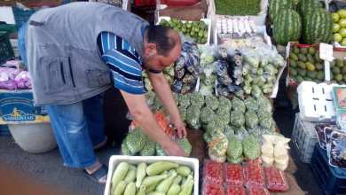 Photo of أسعار الغذائيات تحلق.. خبير اقتصادي: تكلفة إفطار العائلة السورية تصل إلى 900 ألف ليرة