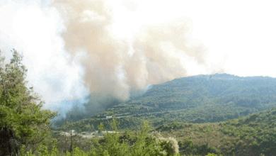 Photo of خطة لمكافحة الحرائق لعام 2021 في اللاذقية