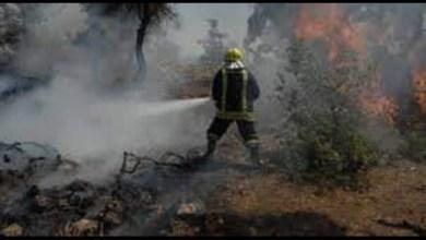 Photo of 13 حريقاً في حماة يوم الجمعة وحرائق الأعشاب في المقدمة