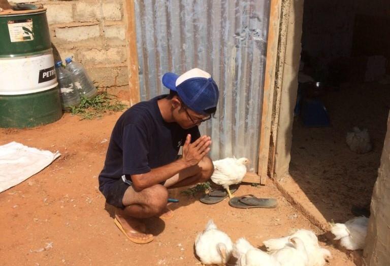 セネガルで鶏300羽を売り切った方法-養鶏ビジネスに奮闘する日本人-