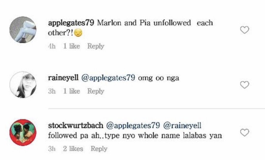 Pia Wurtzbach and Marlon Stockinger Unfollowed and Followed Each Other on Instagram