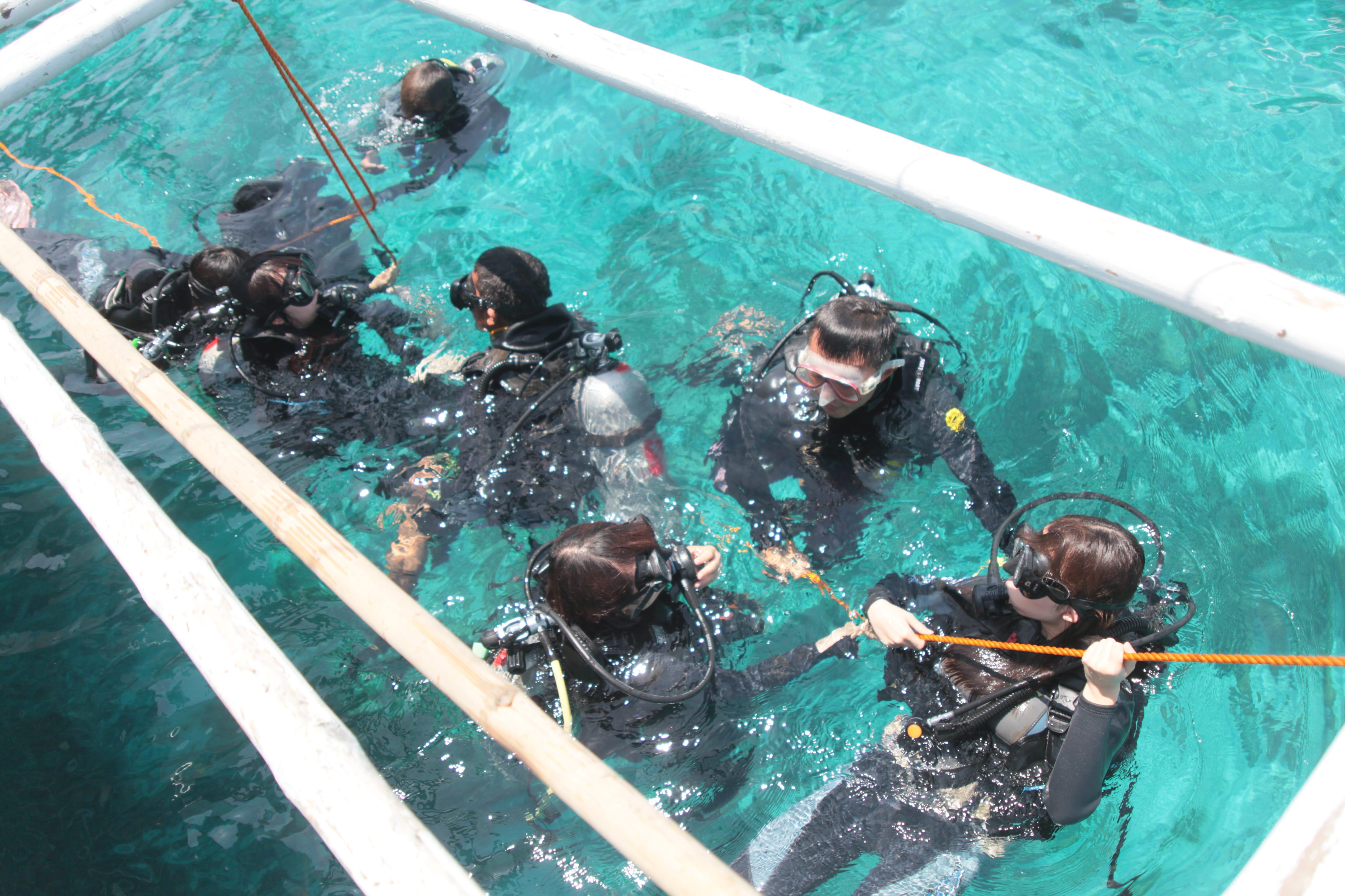 アイランドホッピング パンダノン島 体験ダインビング