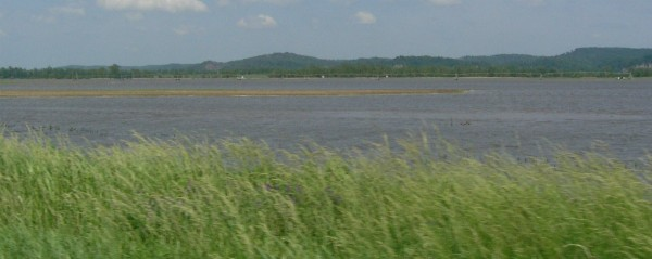 Flooded fields and an irrigation line