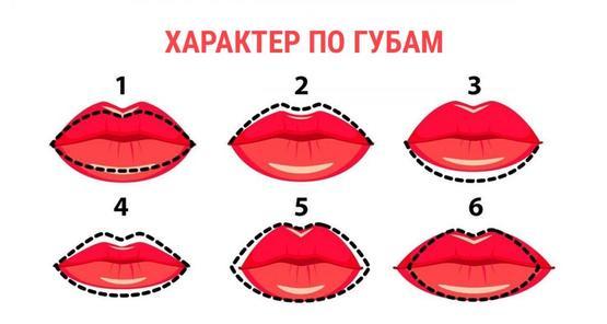 Характер по губам: форма губ расскажет о вас все  Форма Половых Губ