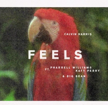 calvin-harris-feels